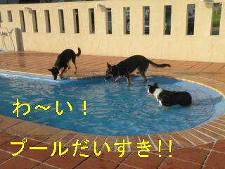 プール大好き・編集DSCN5597_Resize.JPG
