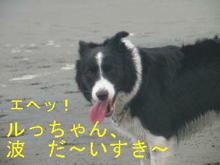波大好きDSCN5671_Resize.JPG